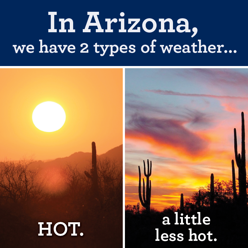 In Arizona the 7 stages of heat in the southwest stacy mantle